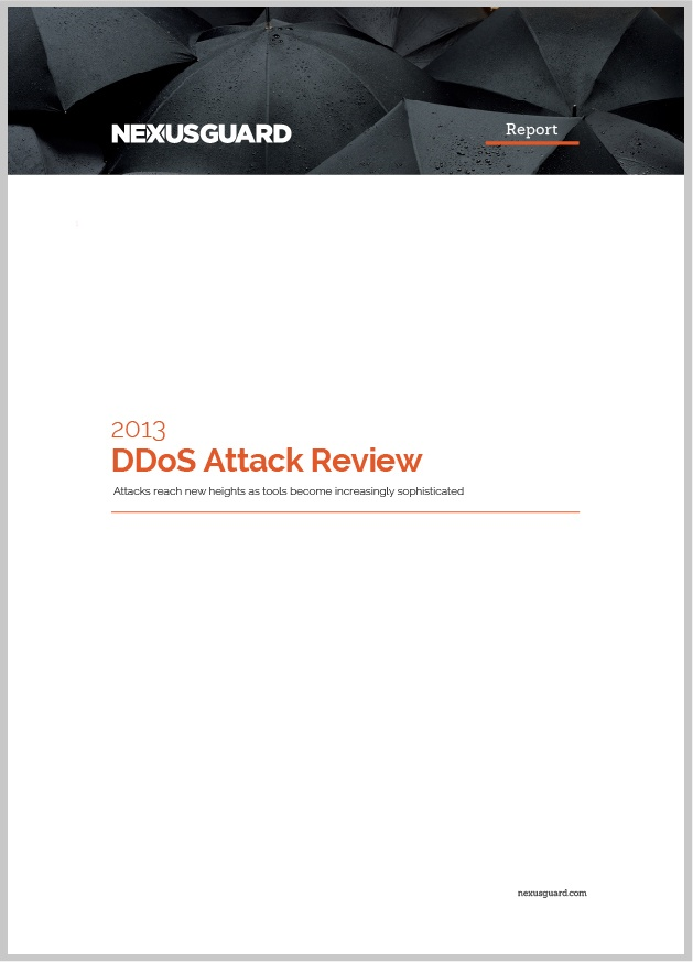 2013 DDoS Attack Review