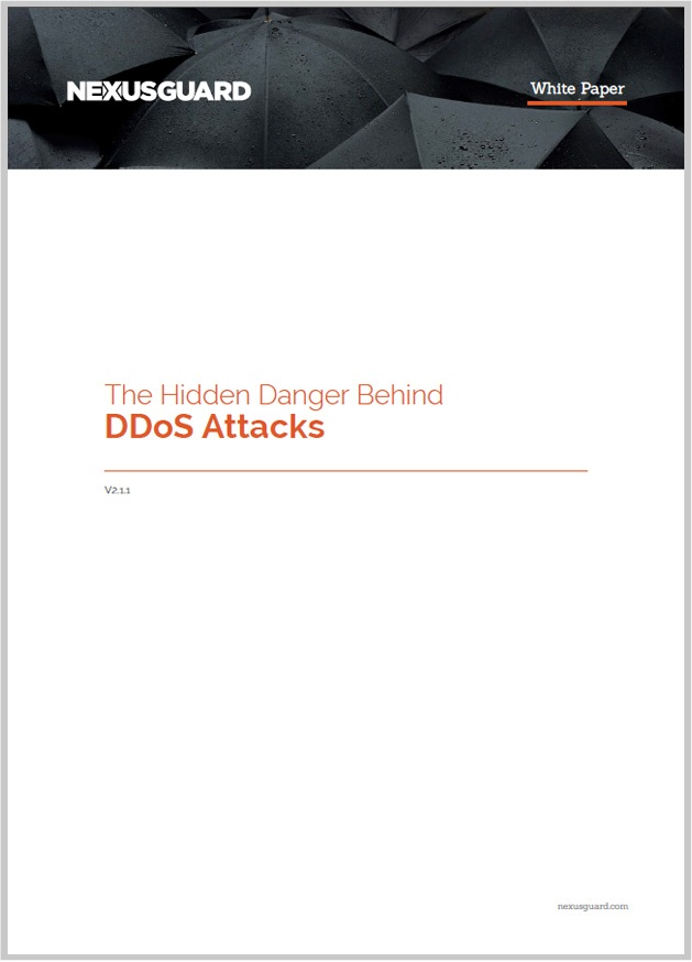 The Hidden Danger Behind DDoS Attacks