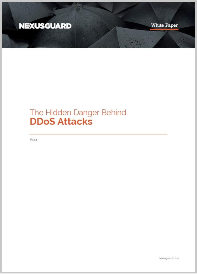 The Hidden Danger Behind DDoS Attacks